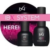 IBX System (2)